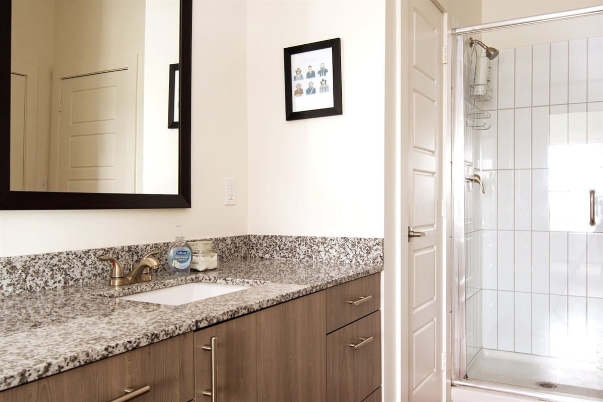 Clean bathroom with new amenities, shampoo/conditioner/body wash and plenty of fresh towels!