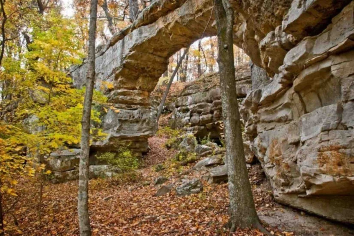 Hiking Trails On Property And In Monteagle