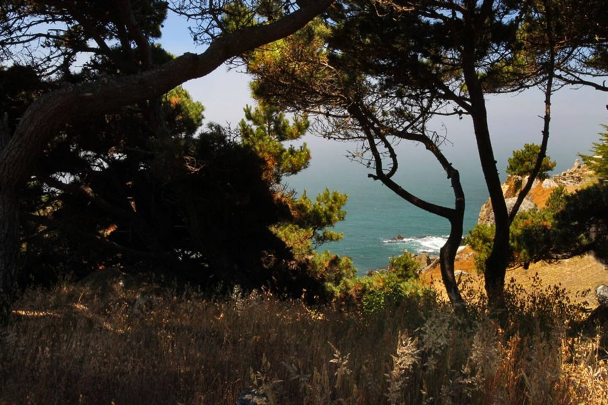 Ocean Bluff Serenity Whitewater Ocean View