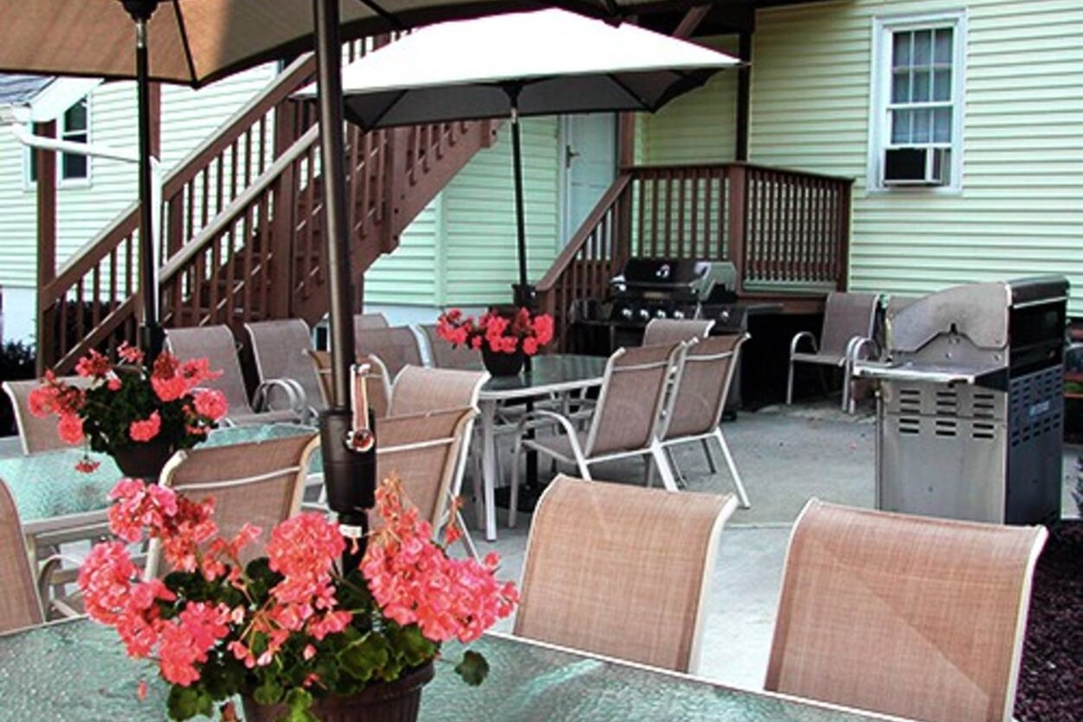Shared back patio with gas bbq grills