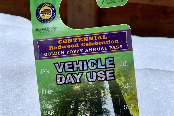 Guests have use of 1 Golden Poppy Pass for entry into Big Trees State Park