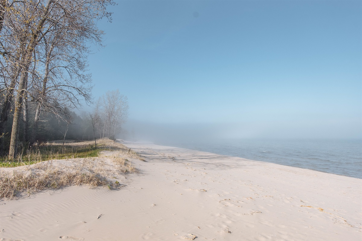 Beach View to North