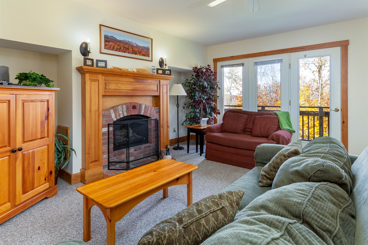 Large, bright living space.  Sleeper sofa. Plenty of table space.
