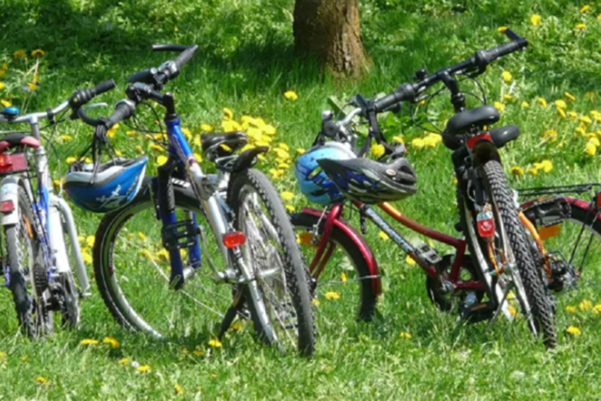 We include 4 bikes for you to enjoy biking throughout Fish Creek and Peninsula State Park!