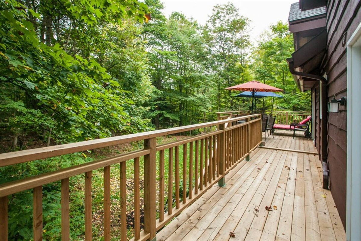 View from rear deck looking into the beautiful forest behind the chalet