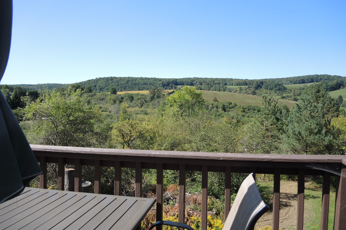View from rear deck