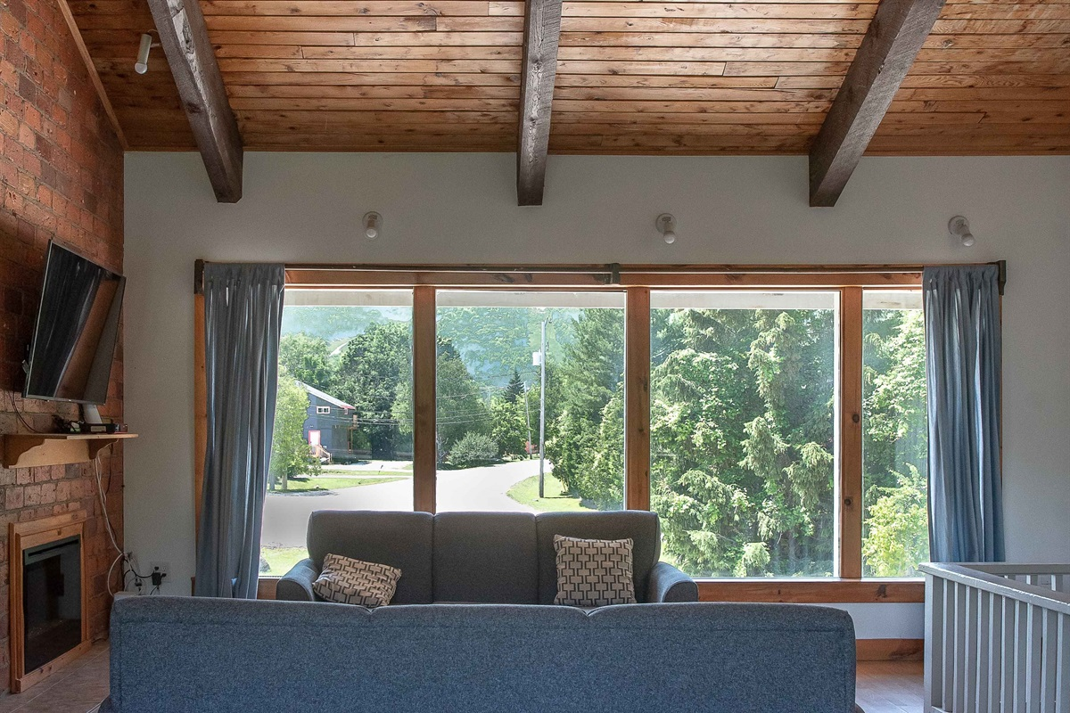 """Bear"" - Living room with a view of Blue Mountain"