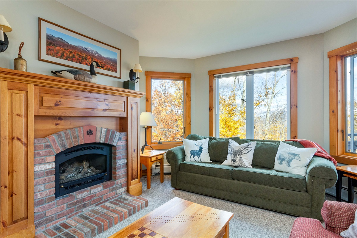 Cozy Living space, instant gas fire. Queen Sofa bed with linens.