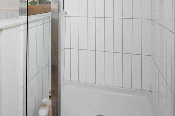 Bath #1 Shower