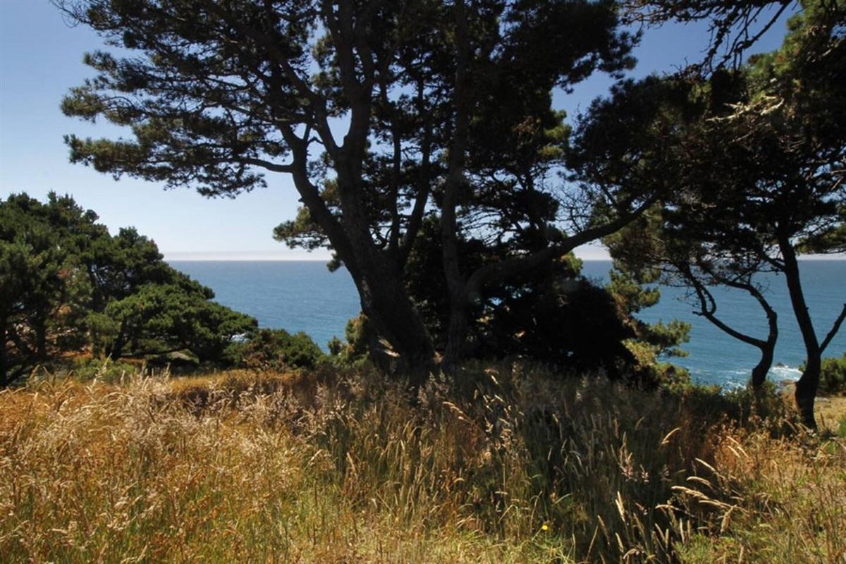 Ocean Bluff Serenity View to Ocean