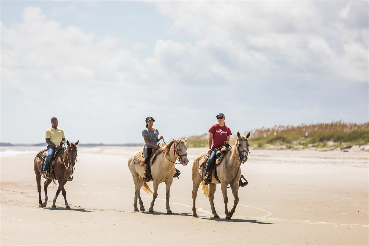 Horseback Riding on our Beaches
