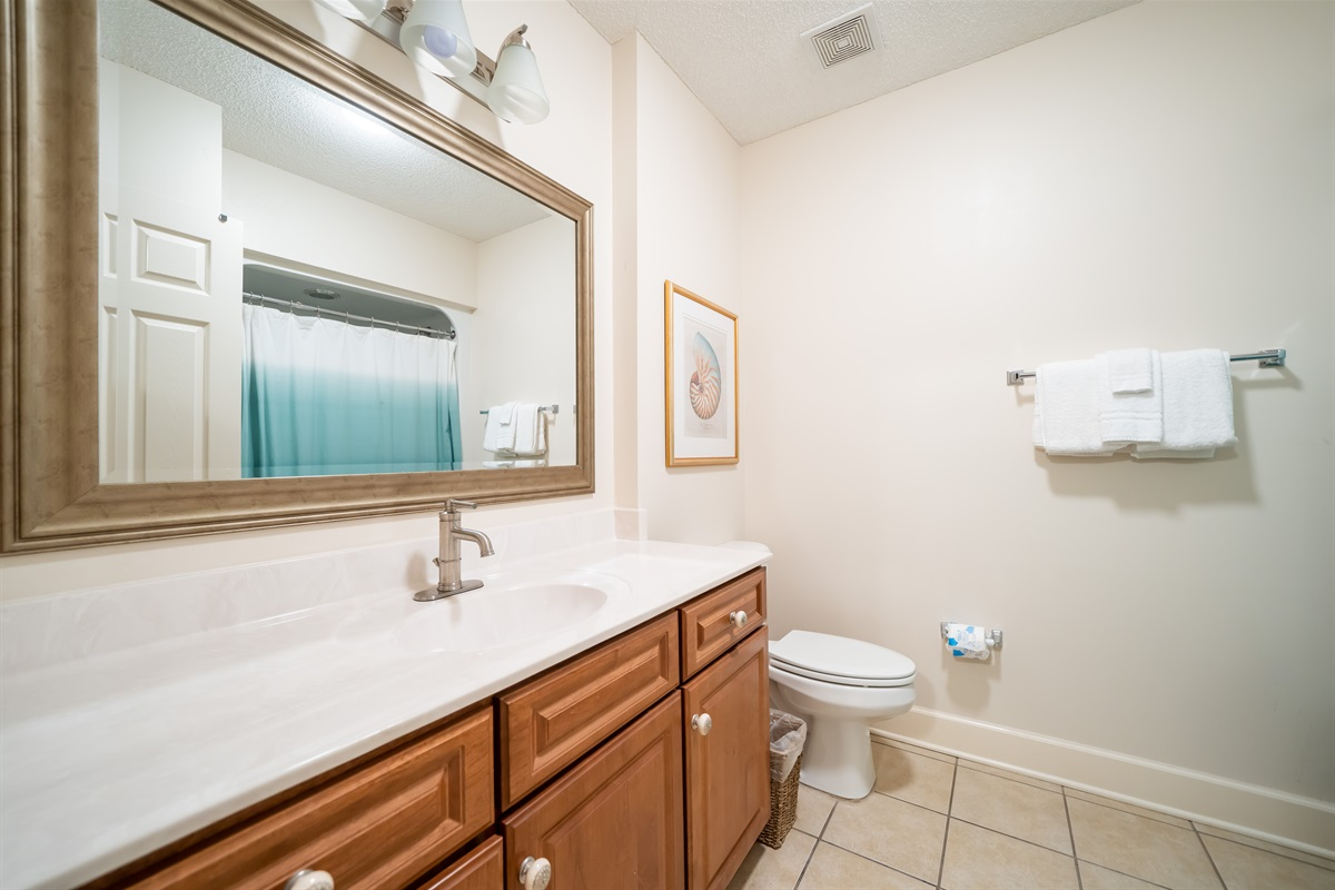 Spacious guest bath with tub/shower combo!