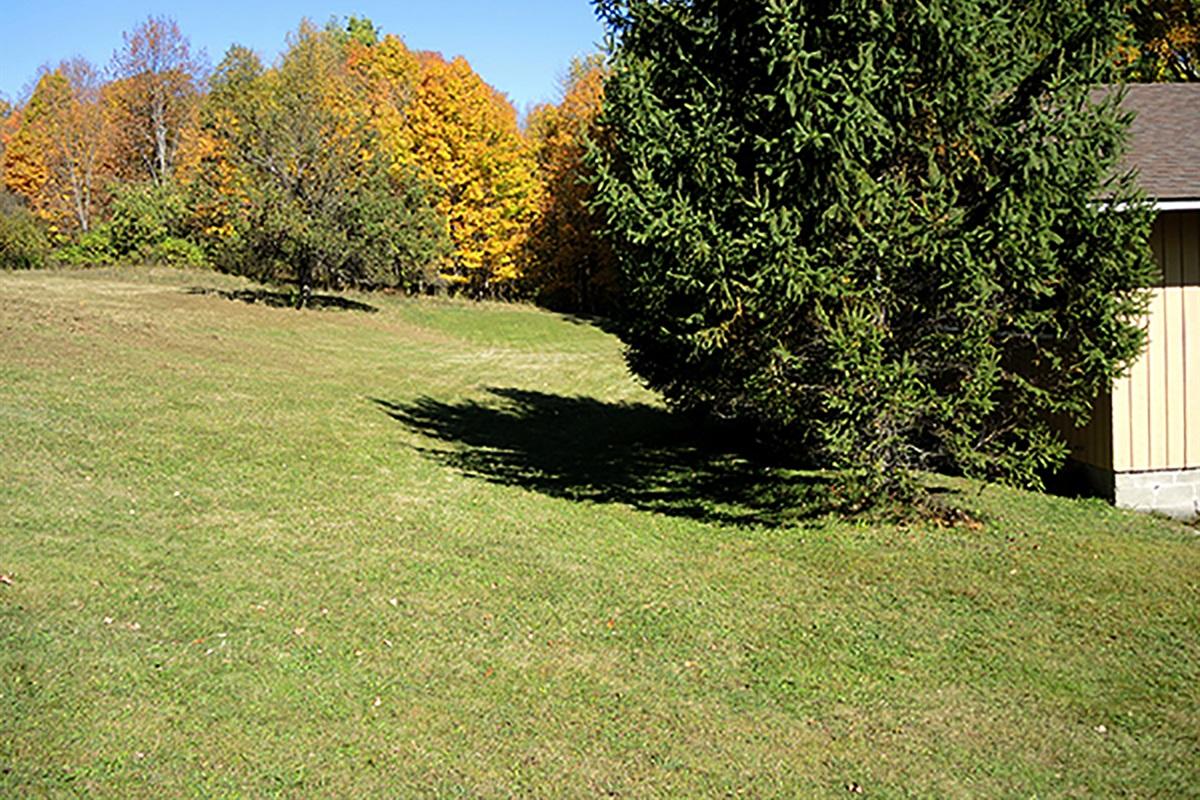 Backyard area at Casa Vista