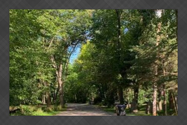 The view on Sand Bay Point Road as you approach Adventure Cottage. Tucked on a wooded and secluded peninsula! Many of the locals and guests love to bike and go for morning and night walks. Very secluded so you are safe from traffic!