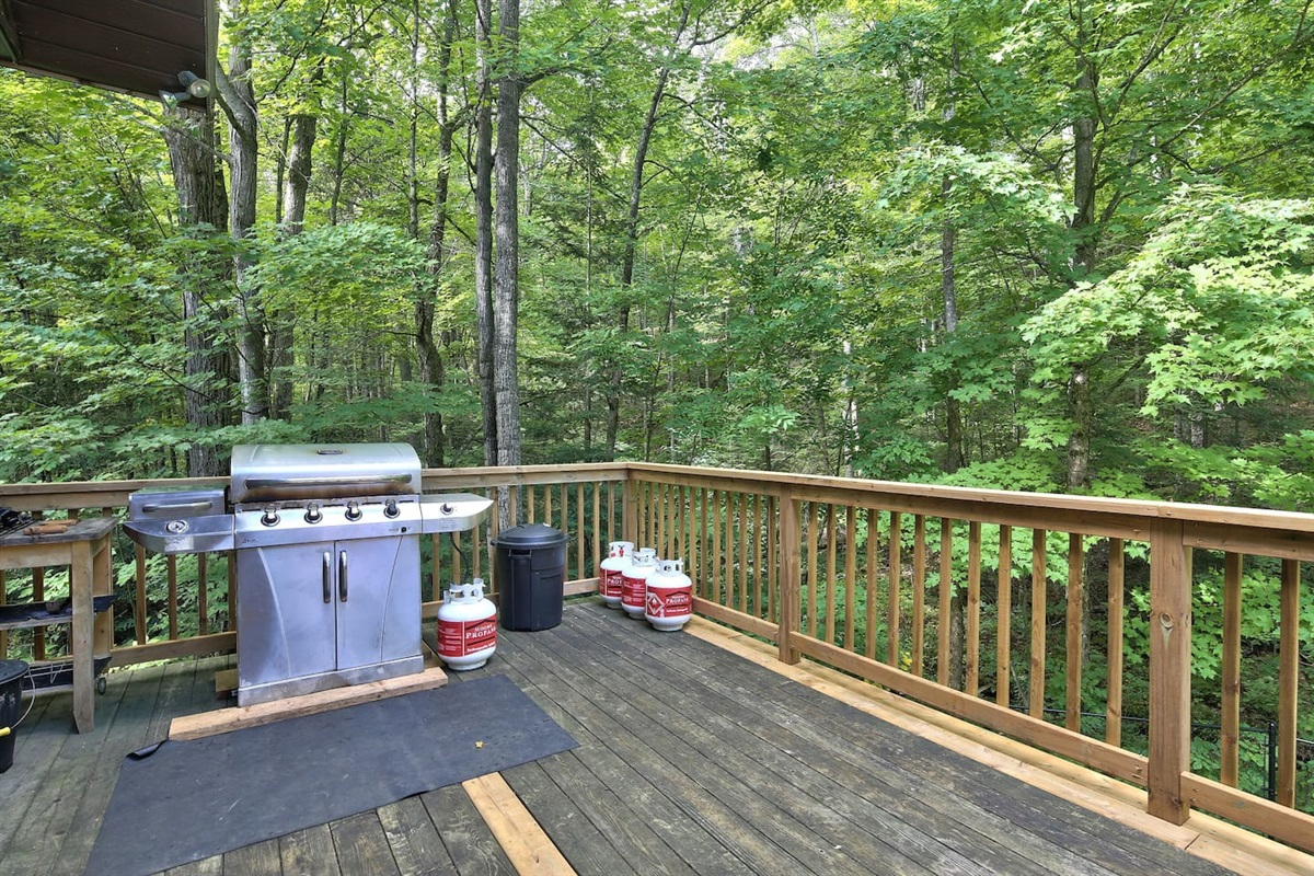 Lots of room on the deck to barbeque and enjoy the forest scenary