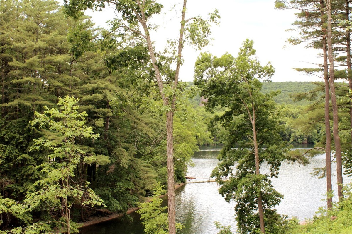 Beautiful, serene views of the lake from the balcony or deck.