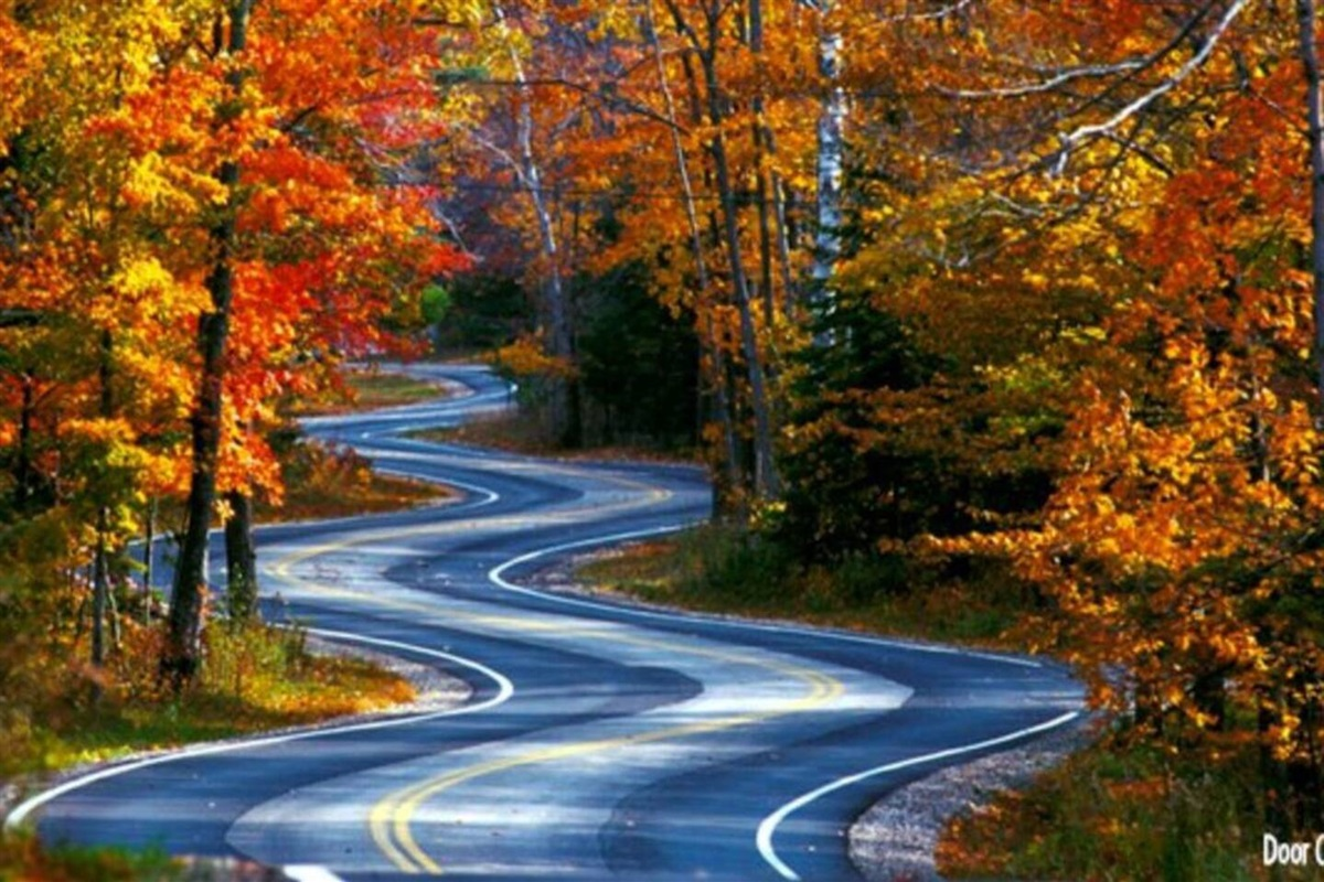 Come to Door County in the fall to watch the changing of the trees to gorgeous colors.