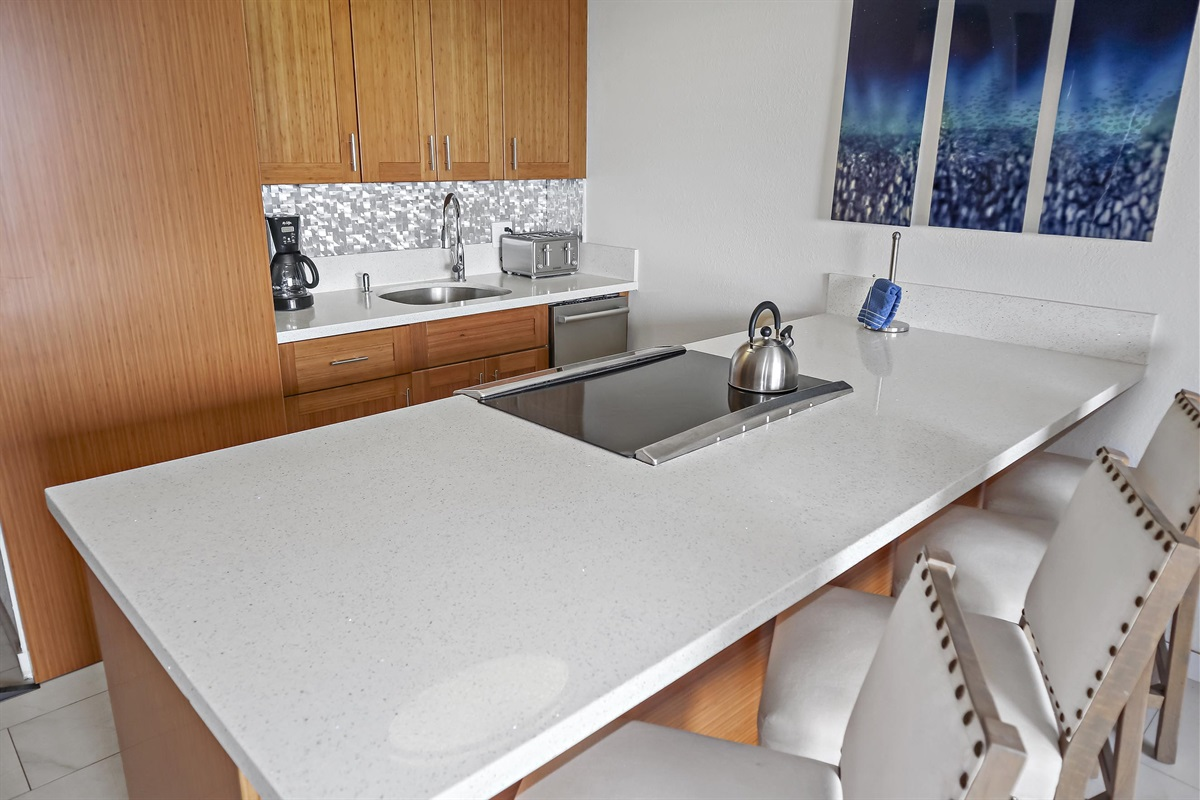 Cool, modern kitchen -- brand new remodel