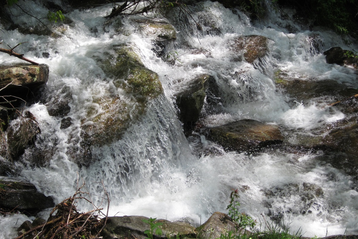 Watch the water rapidly go down the rocks in the creek