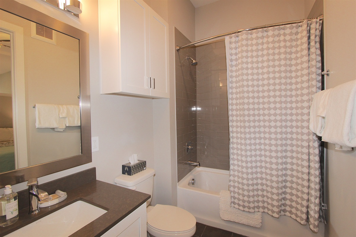 Master bathroom with tub/shower enclosure.