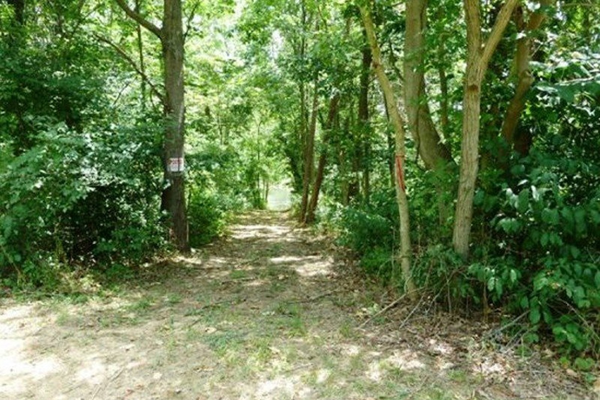 Paths on the property to explore