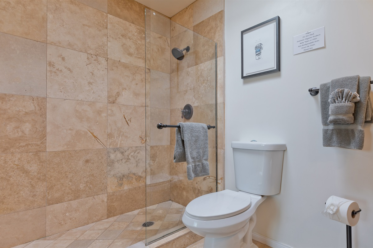 Master bathroom shower + toilet