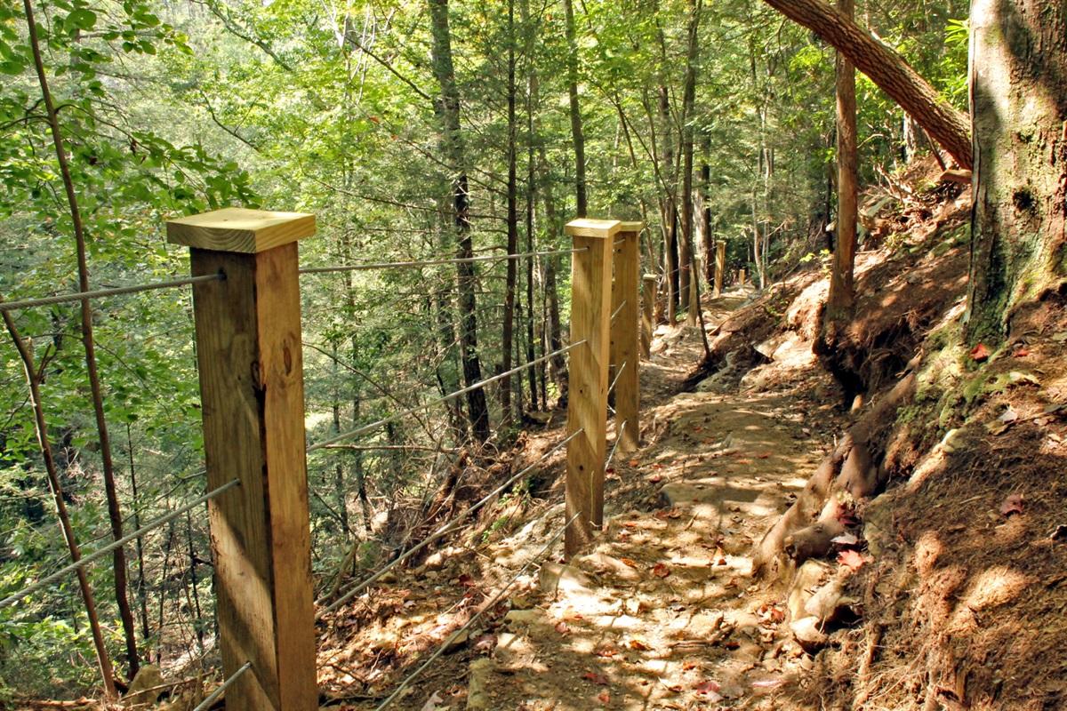 Trail to Deer Lick Falls!