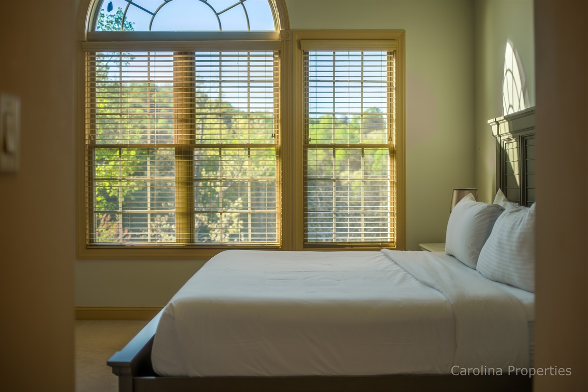 Additional view of main level master bedroom with king size bed