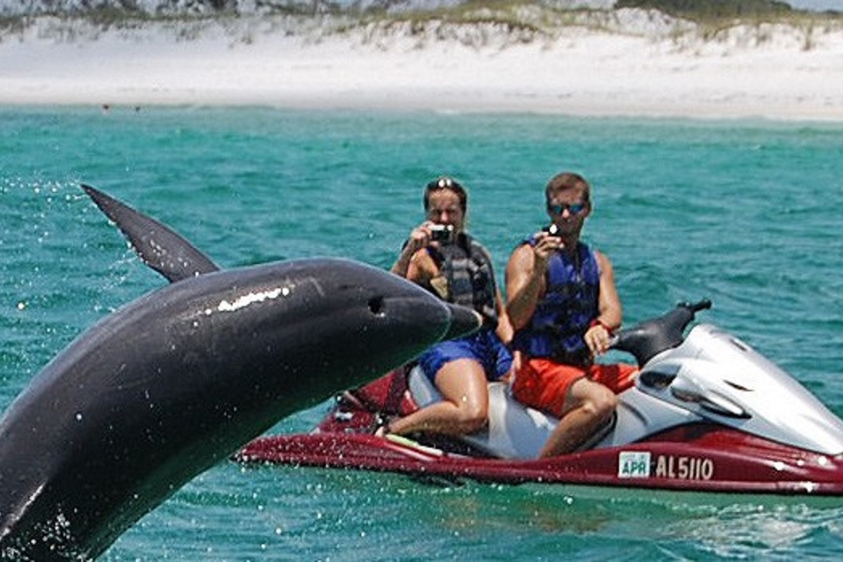 Jet ski rentals within a mile