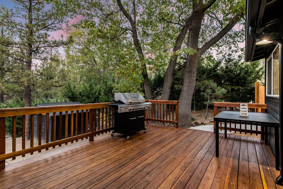 Back deck with propane gas grill BBQ and outdoor seating area.