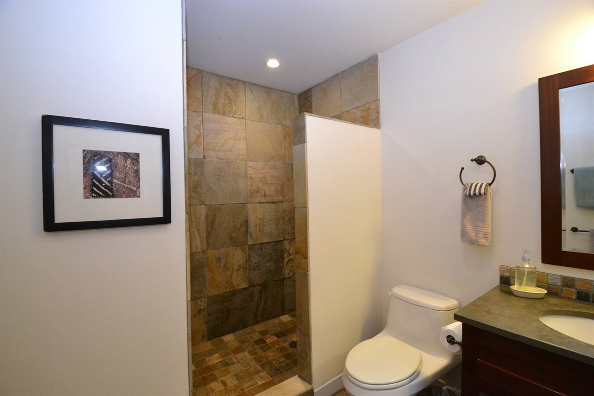 Large stone walk in shower