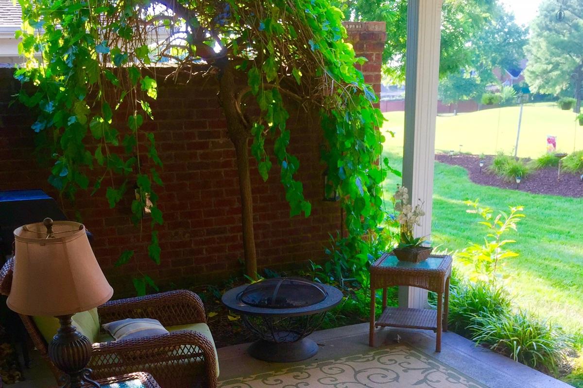 Outdoor patio views