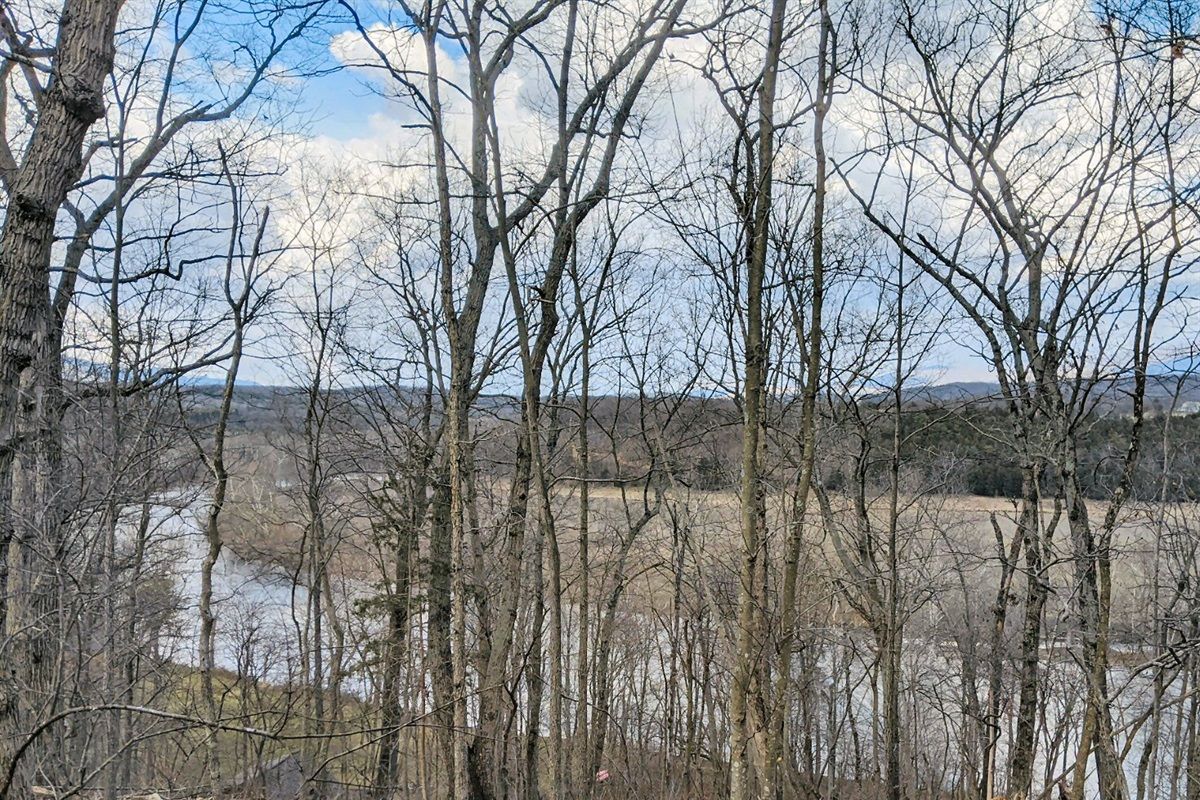 See the mighty river through the trees or the mountains in the distance