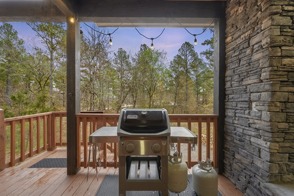 Webber gas grill - 2 cylinders of propane provided