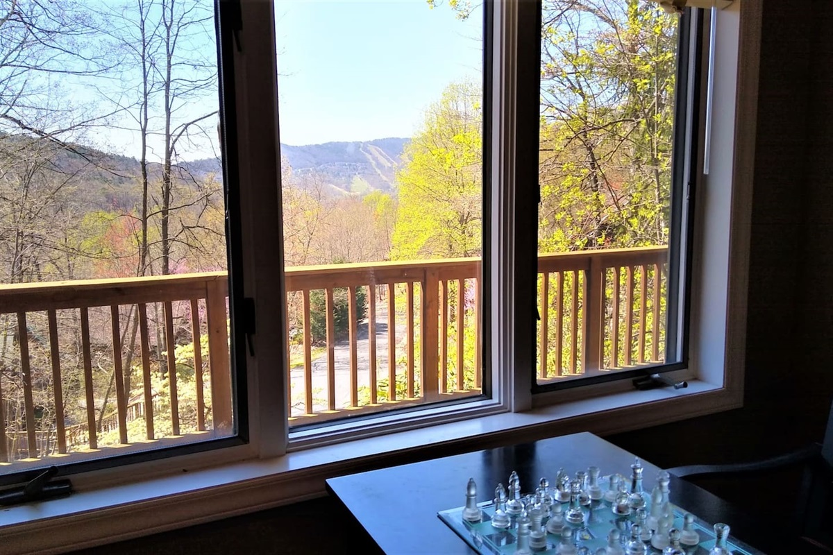 View from the Chess Table in the upstairs living room