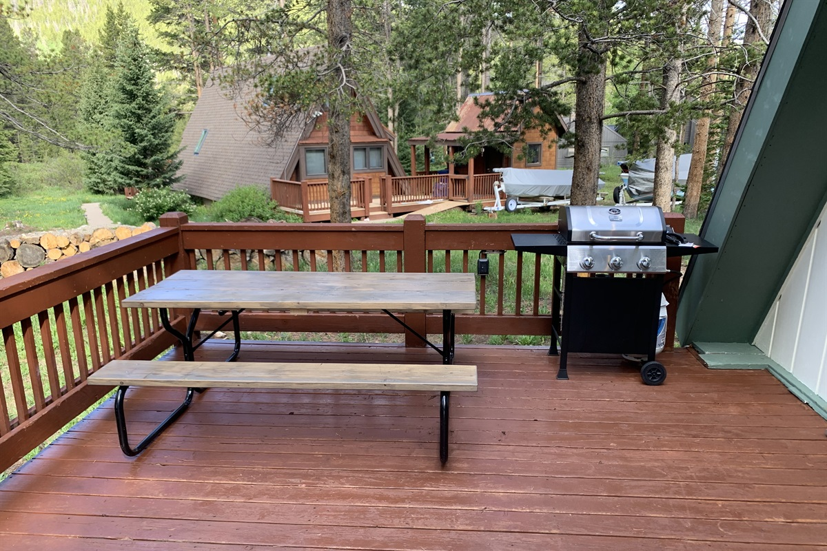 Picnic table & propane grill on the deck