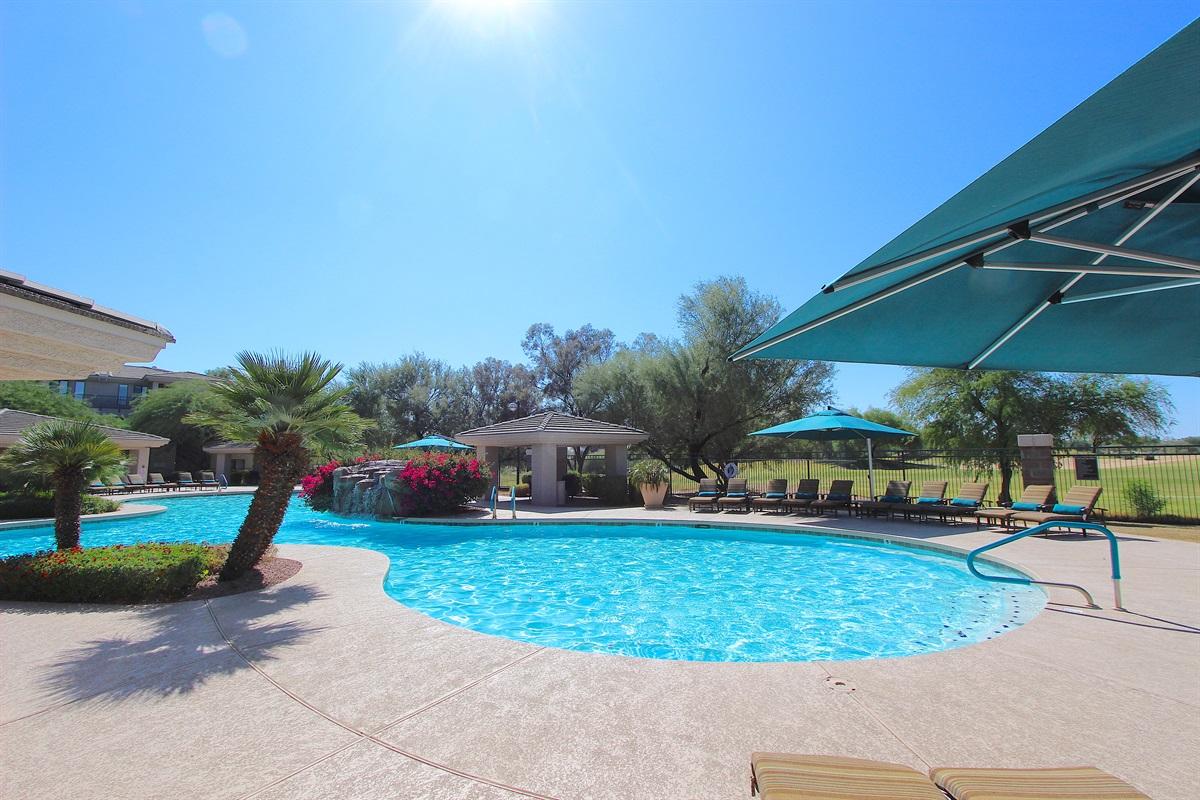 Pool-Always sunny