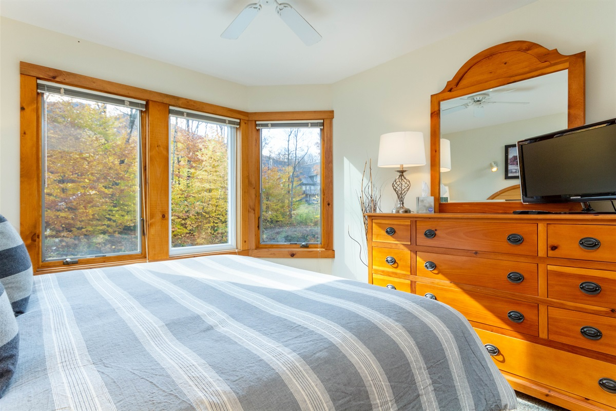 Master Bedroom - look out onto Grammy Jay.