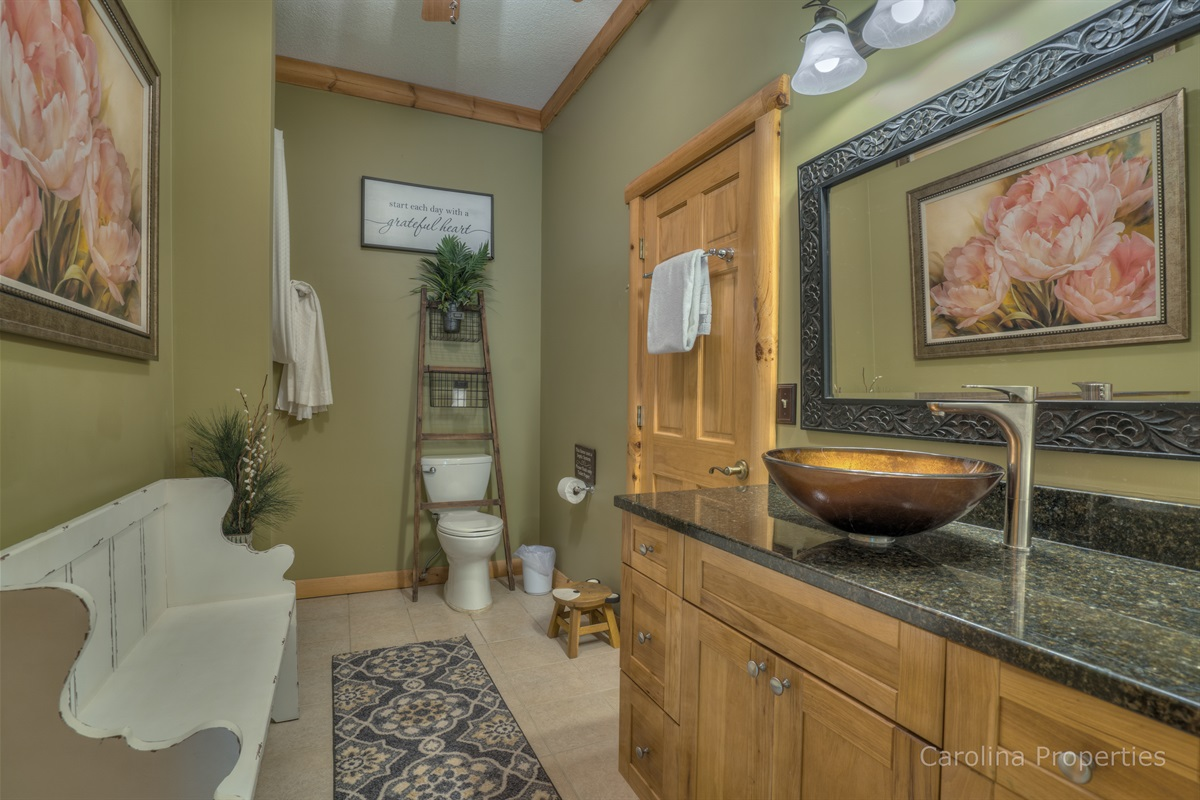 Lower level bathroom with walk in shower