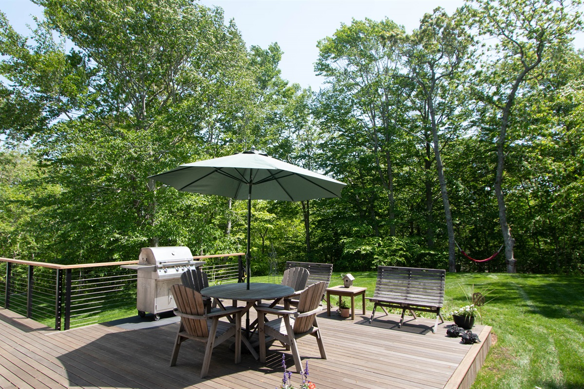 Deck Area with grill and seating