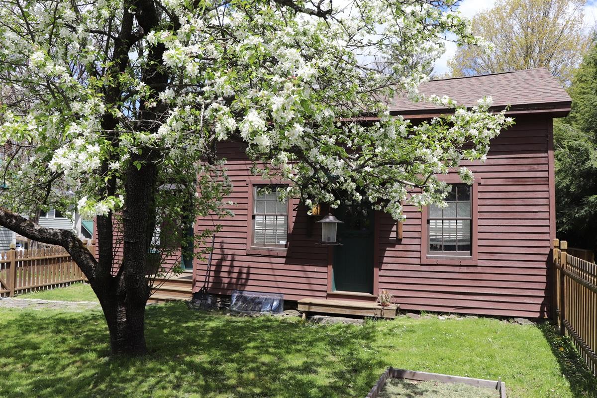 Springtime bloom at Craftsman House