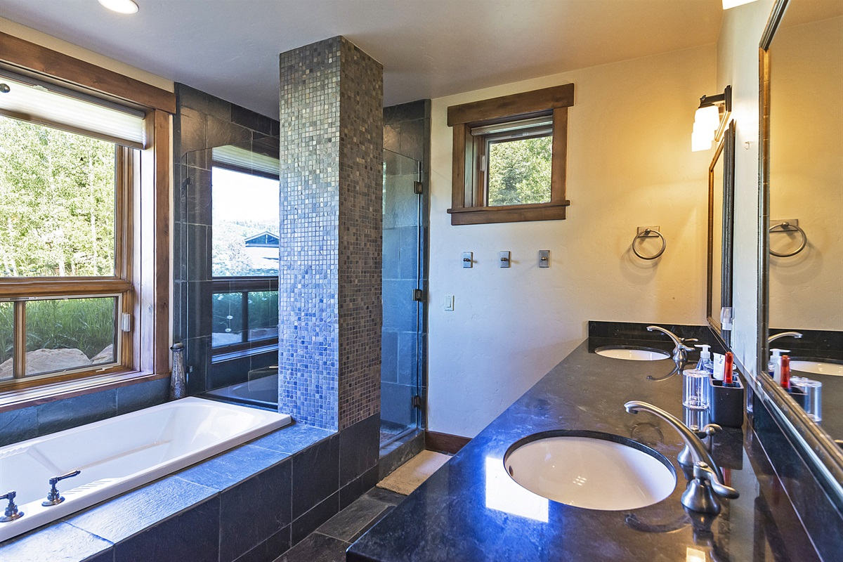 Downstairs master suite - bathroom