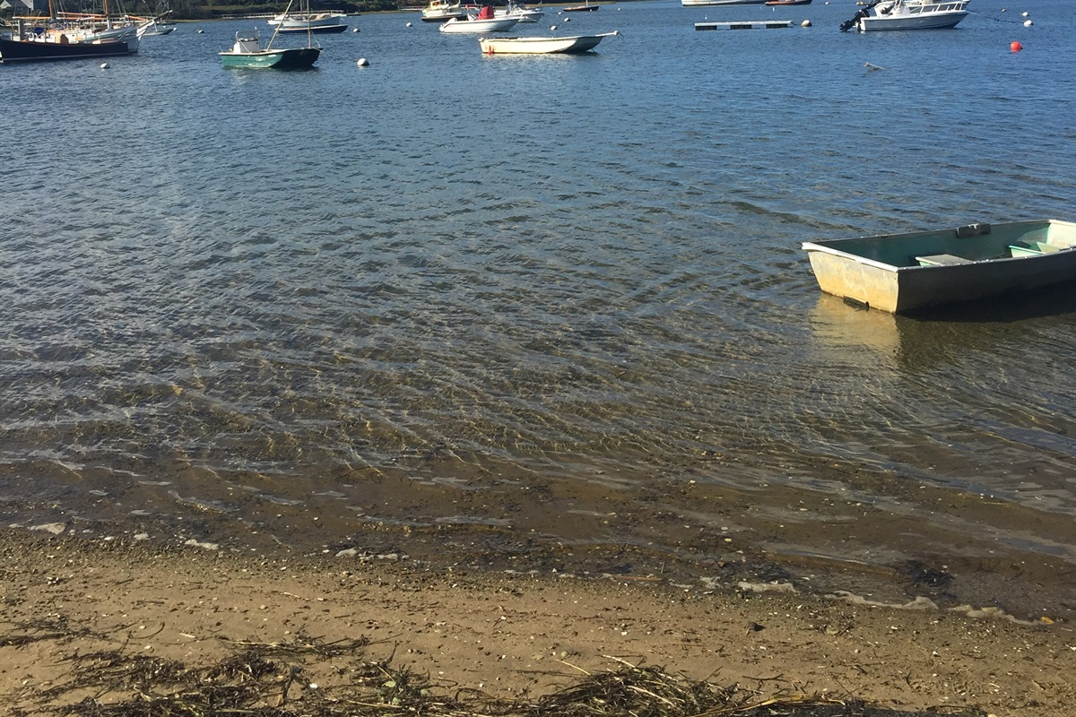 Great location for clamming.  Bring you rake!