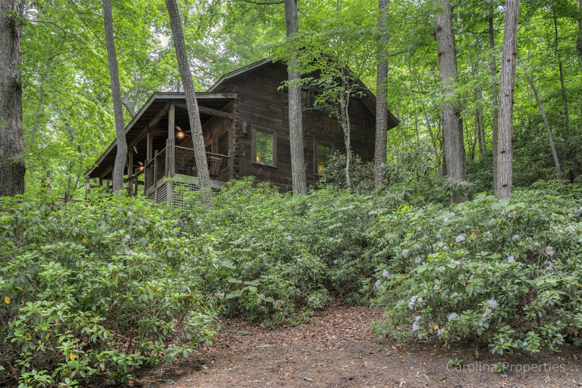 View of Lure Me cabin