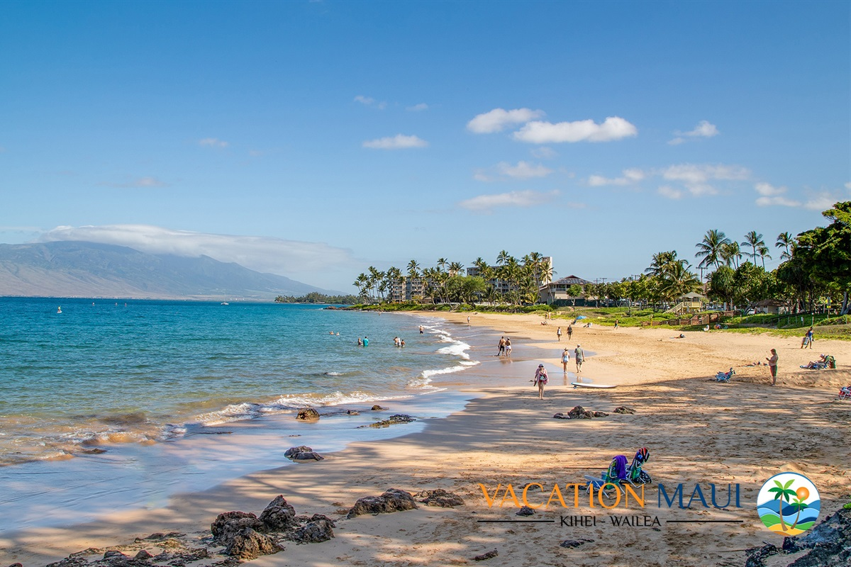 Amazing Kamaole II Beach -- snorkel, swim and sun