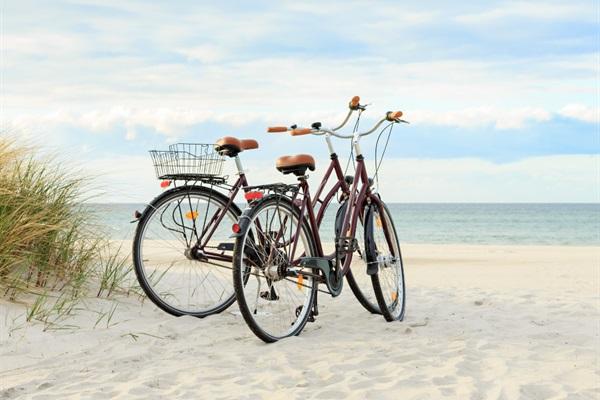 (1) FREE Bike Rental each day