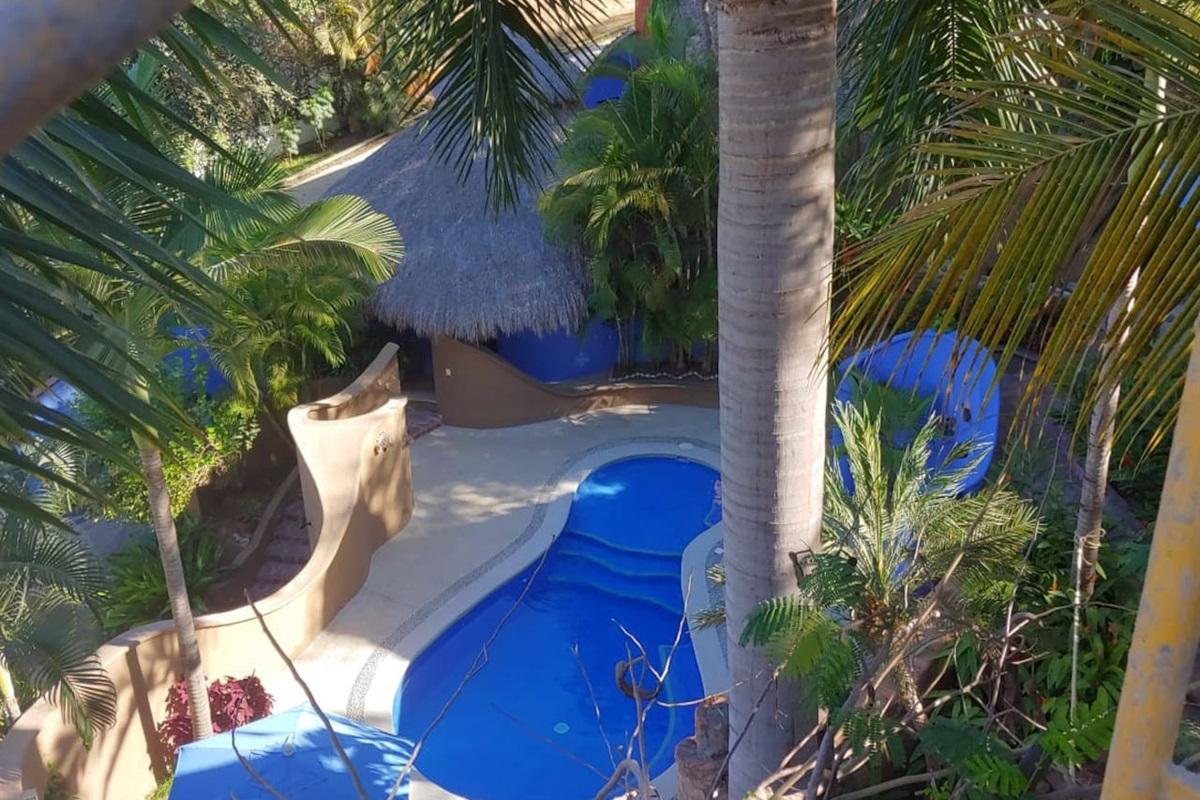 Shared pool with Casa Siete Palmas and Casita La Palmita.