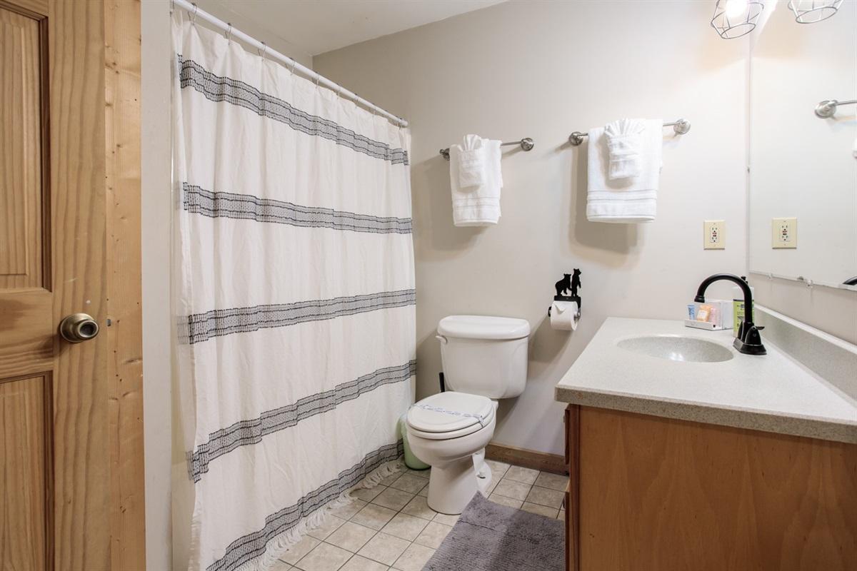 Terrace Level Bathroom