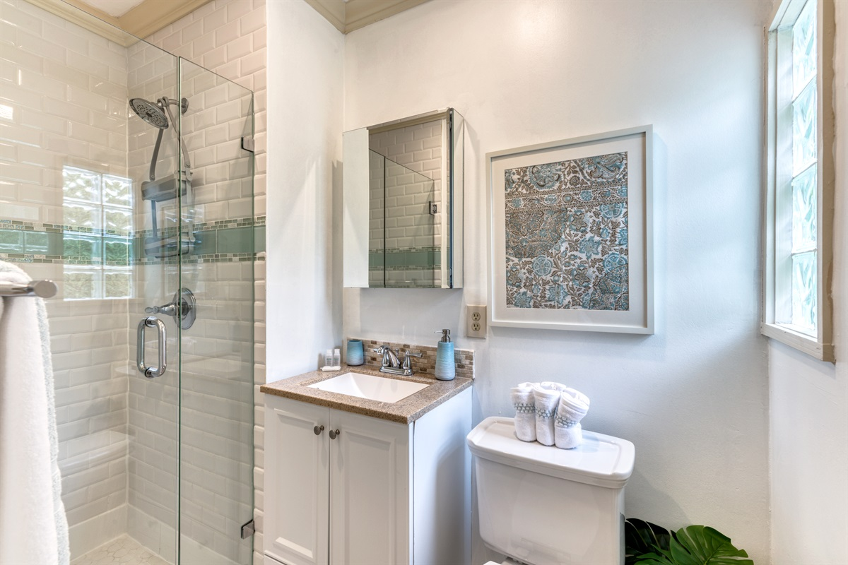 2nd Bathroom with shower & splashes of teals & grays.