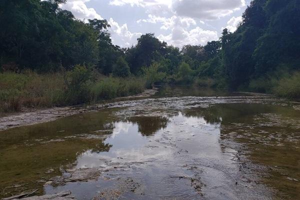 Cibolo Creek behind the house.